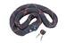 ABUS Ivy 9100 Zapięcie kablowe  czarny